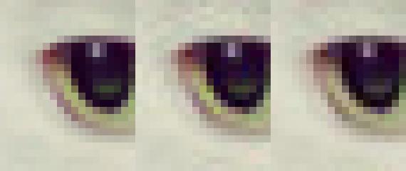 Normal(L)_libjpeg_Guetzli(R).png
